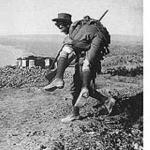 Ode-Voices-of-Gallipoli-and-the-first-world-war
